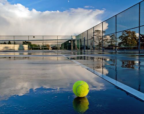 Wet Court