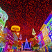 Osborne Family Spectacle of Dancing Lights - Light Canopy Circa 2010 by Tom.Bricker