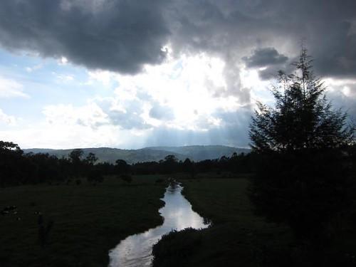 Ugandan Creek