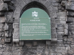 Photo of Donal Roe MacCarthy Mór green plaque