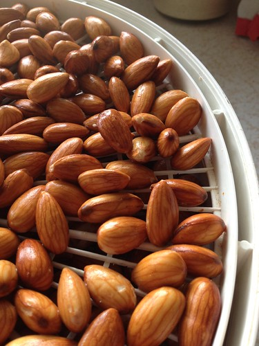 soaked raw almonds