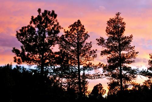 pink sunset sky orange house home nature clouds southdakota blackhills forest ilovenature nikon forsale deck sd evergreens deadwood dakotas blackhillsnationalforest viewfrommyhome ranchstyle mountainchalet purelynature