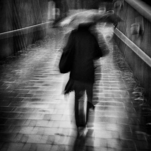 Rain Walker..