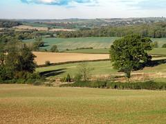 King's Hill Views