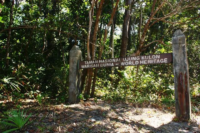 Taman Nasional Ujung Kulon Surga Di Ujung Barat Pulau Jawa A Day