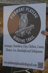 Piedmont Birding Trail At Horseshoe Bend Park  - 25