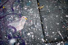 Quand le hasard des gouttes de peinture dessine un oiseau