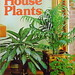 How to Grow House Plants