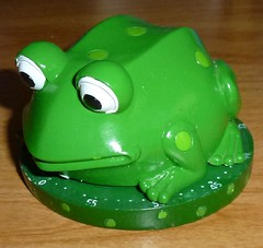 Boston Warehouse - Frog Timer by KenCalvino