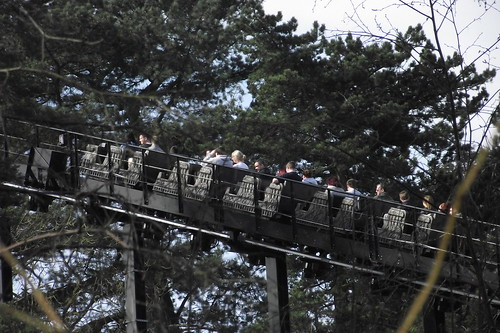 Thirteen Travelling up the Lift