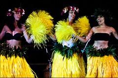 sports(0.0), team sport(0.0), yellow(1.0), event(1.0), performing arts(1.0), entertainment(1.0), dancer(1.0), dance(1.0), hula(1.0), performance art(1.0),