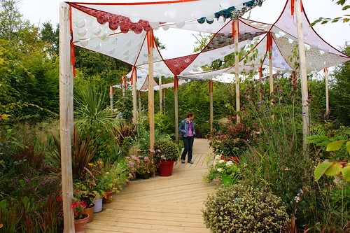Contemporary Garden with festive shade structure and exciting potted specimens