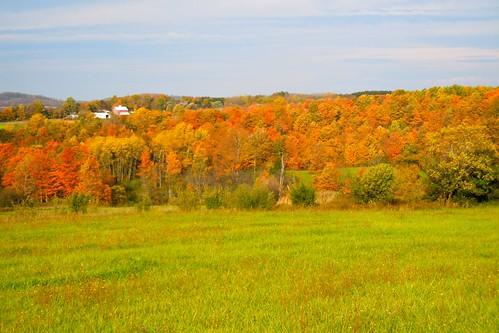 barn farm hills fallfoliage onondaga