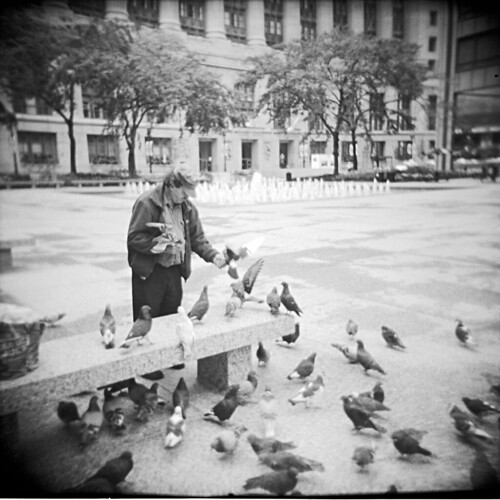 Man and Pigeons 2