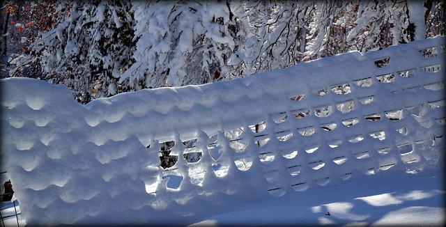 Snow Grid