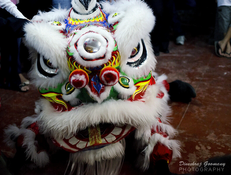 Celebration of Chinese Festival in Mauritius