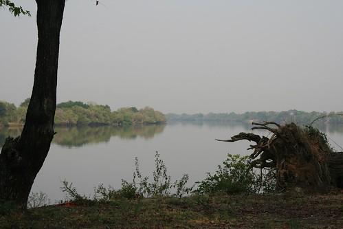 morning river zambezi