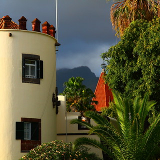 Colors of Madeira - Funchal