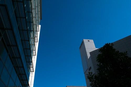 2011-11-22の空
