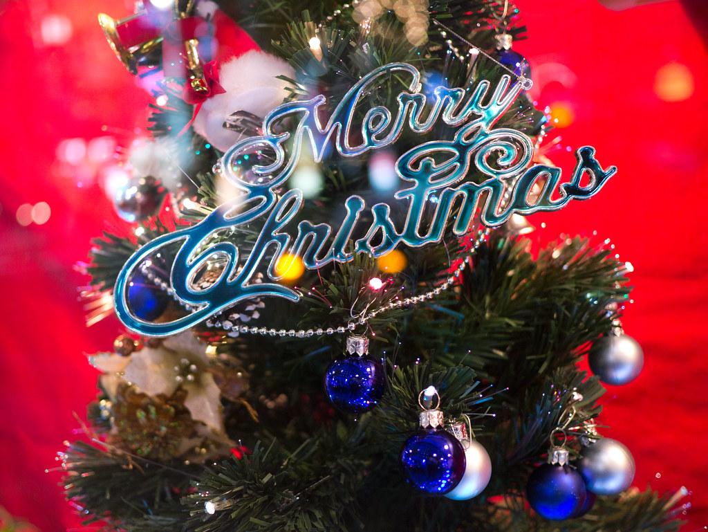 Merry Christmas 2011/11/29 P1000769