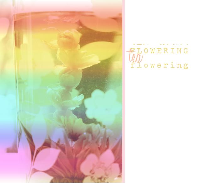 {flowering} tea