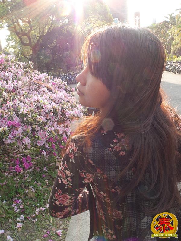 假掰的台大公園杜鵑花-14