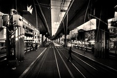 Rome as seen through a tram window