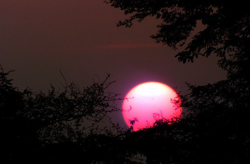 sunset red sun india hyderabad andhrapradesh ringexcellence