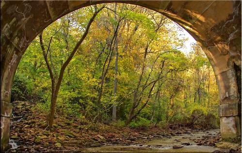 bridge autumn trees fall leaves creek decay norristownfarmpark