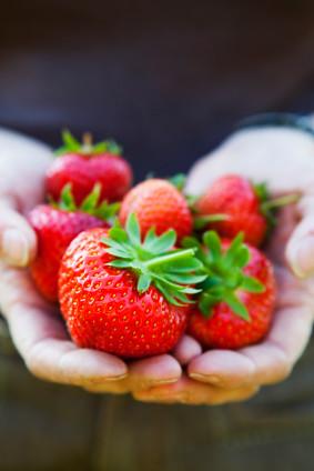 fruit greenhouse