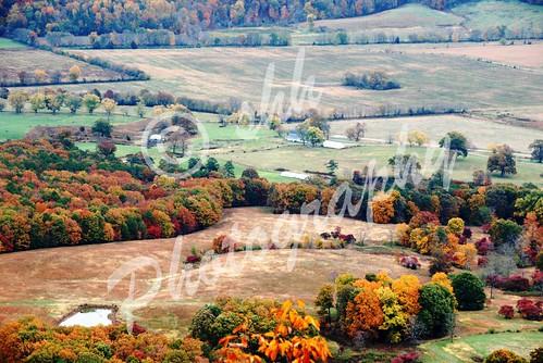 alabama foliage valley