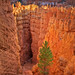 Entering Wall Street - Bryce Canyon