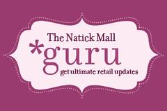NATICK guru-logo-300x200