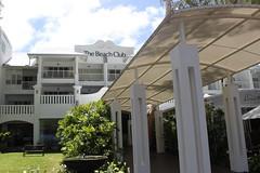 Palm Cove_7