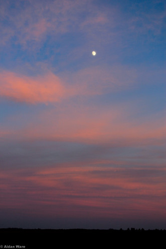 Early November Moon, North of Guelph by Aidan M.D. Ware