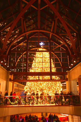 faneuil hall christmas tree lighting. faneuil hall christmas tree lighting g flmb on