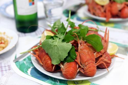Istakoz, local enormo-crayfish