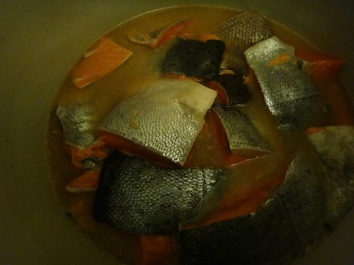 Salmon in the brine