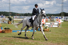 animal sports, equestrianism, english riding, modern pentathlon, eventing, dressage, mare, stallion, show jumping, hunt seat, equestrian sport, sports, recreation, outdoor recreation, mammal, equitation, horse, horse harness, person,