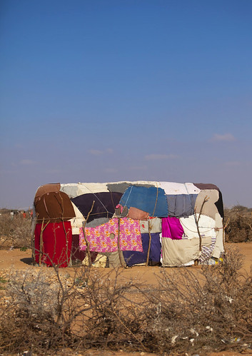 House patchwork -  Baligubadle - Somaliland by Eric Lafforgue