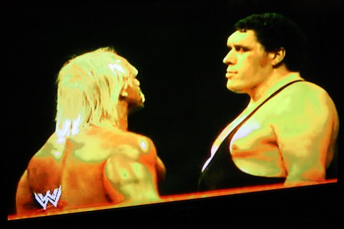 Hogan and Andre Stare Down