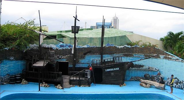 sea lion show in national aquarium in havana cuba