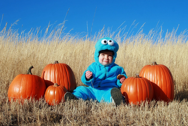 Cookie Monster Halloween 2011