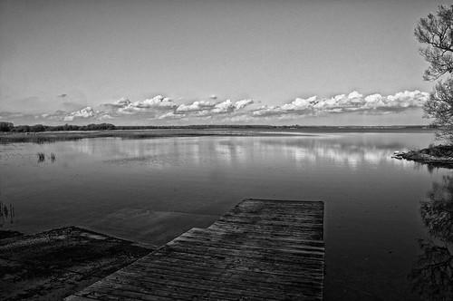 trees beach clouds reflections blackwhite ramp princeedwardcounty