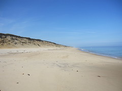 The beach at Cape Cod National Seashore