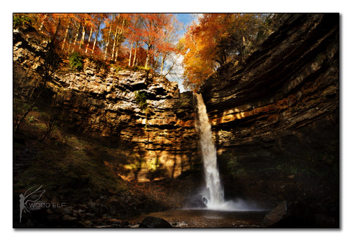 Hardraw Force - Autumn Glow  {Explored}