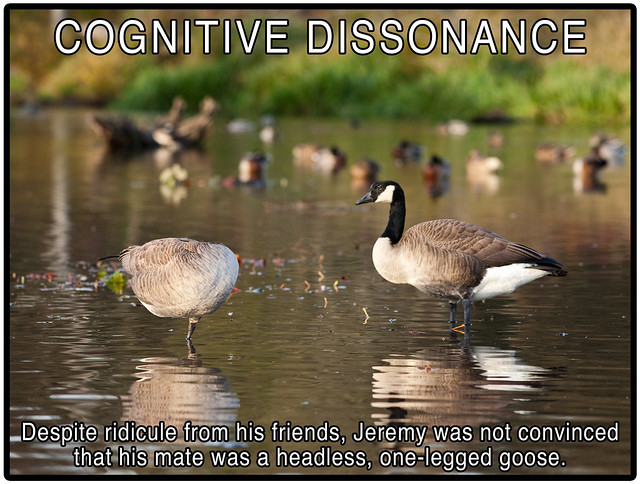 personal recount of cognitive dissonance experience We all strive for internal consistency, searching for peace of mind through the simplest of interpretations spoon-fed absolutes become our credo, but our ever-swelling scope of the world around us inevitably gives birth to cognitive dissonance.