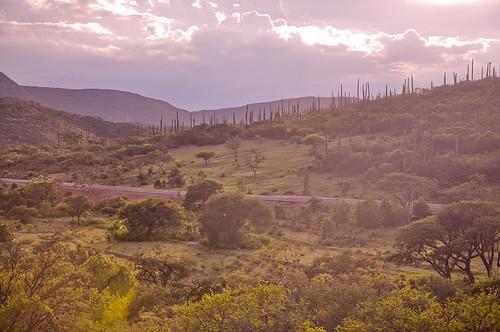 San Pedro Atzumba (19)