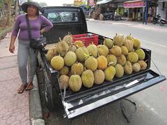 plant(0.0), produce(1.0), fruit(1.0), food(1.0), durian(1.0),