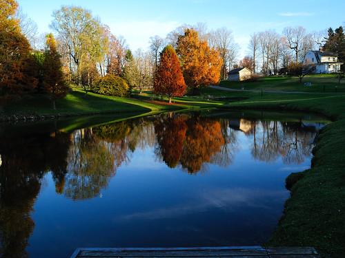 november autumn trees ohio green fall colors dedication outdoors colours bright sunny heath newark planting aboretum dawes 2011